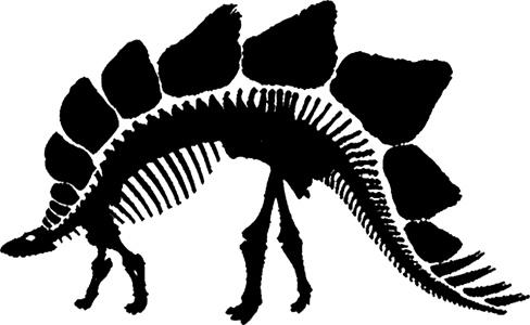 bwalk-logo