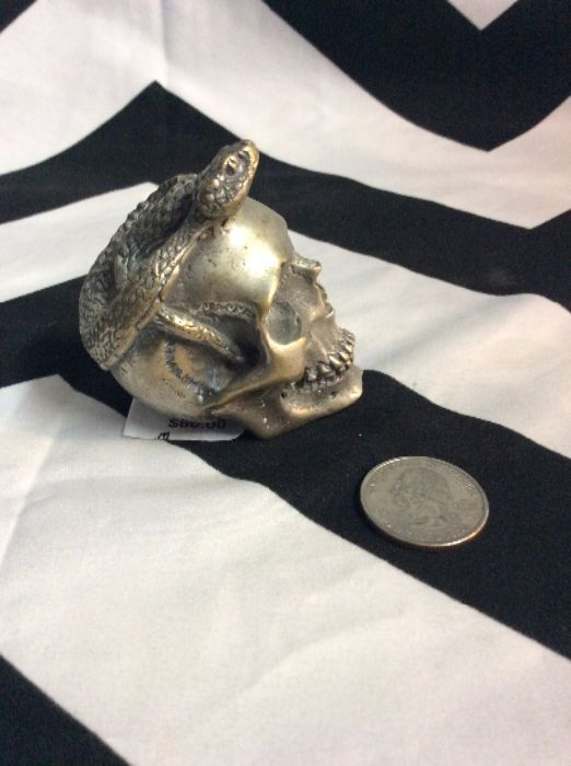 SILVER SKULL WITH SNAKE 2