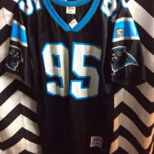 NFL Carolina Panthers #95 Jersey 1