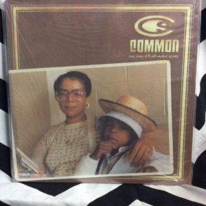 VINYL COMMON One Day It'll All Make Sense LP 1