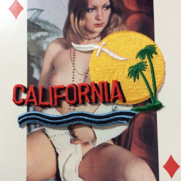 product details: EMBROIDERED PATCH - CALIFORNIA W/ SEAGULL & PALM TREES photo