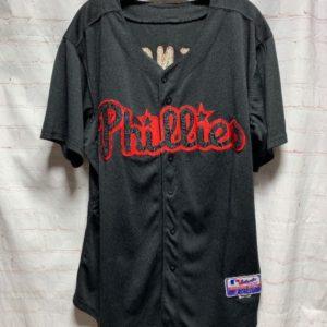 dcb50a316 MLB ST. LOUIS CARDINALS PINSTRIPE BASEBALL JERSEY W/ APPLIQUED ...