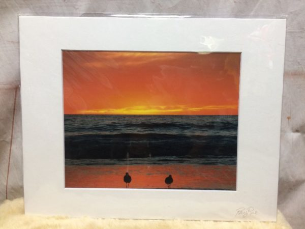 SEAGULLS & SUNSET BEACH SCENE MOUNTED PHOTOGRAPH