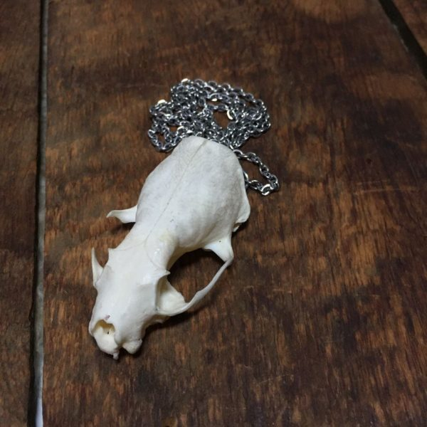 product details: MINK SKULL SILVER CHAIN NECKLACE photo