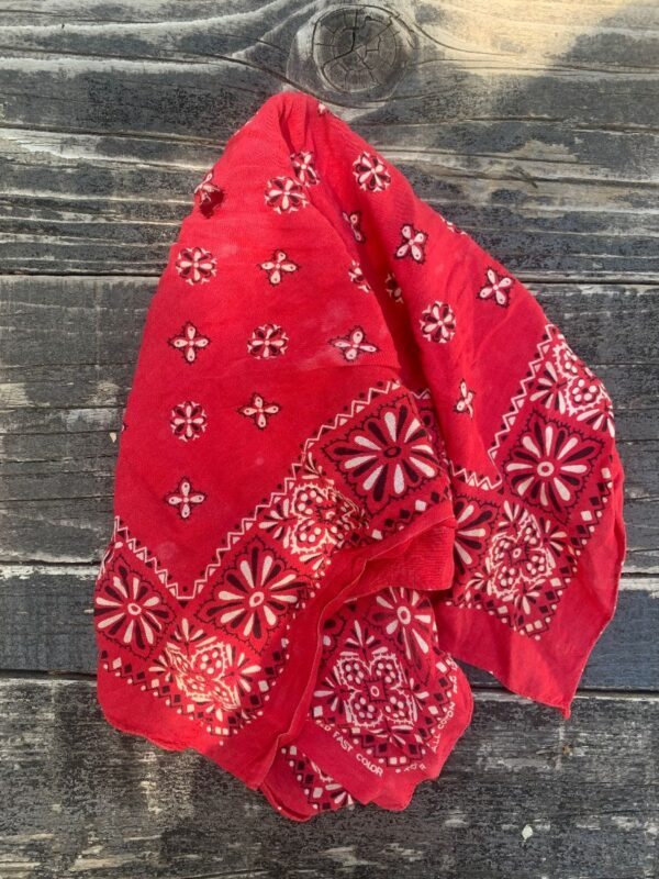 product details: 100% COTTON THIN TORN AND TATTERED BANDANA UNUSUAL DESIGN AS-IS photo