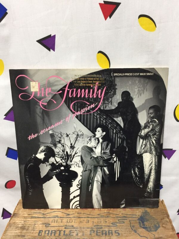 product details: THE FAMILY ?– THE FAMILY *MAXI SINGLE photo
