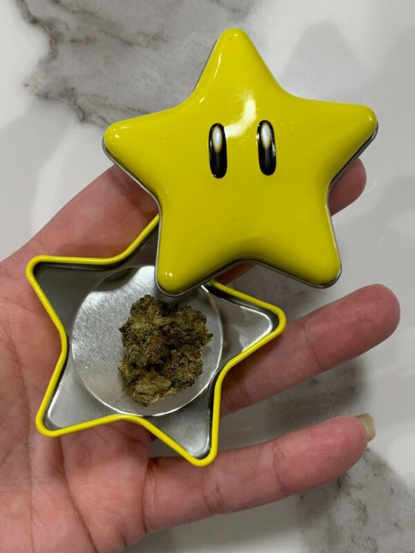 product details: SUPER MARIO BROS. STARMAN CANDY TIN CONTAINER photo