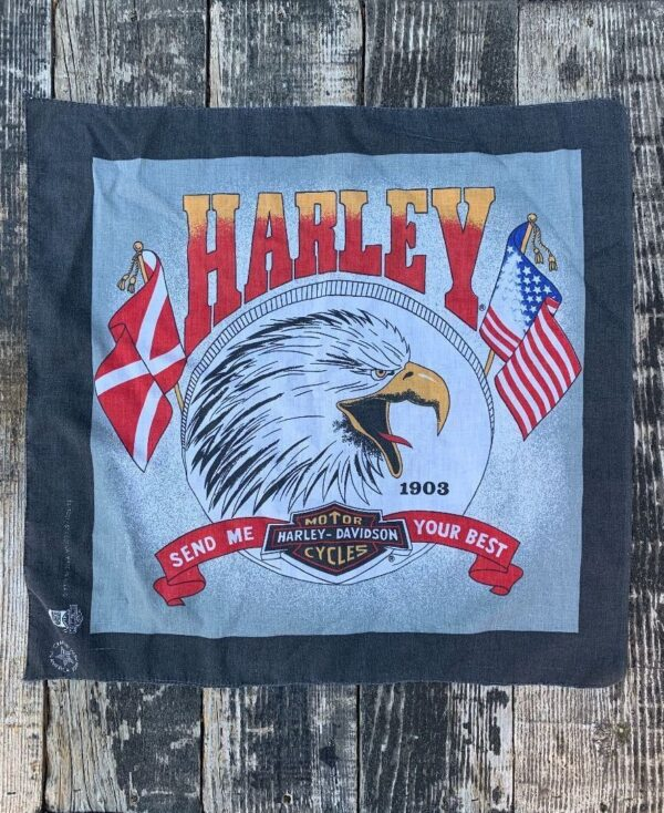 product details: HARLEY DAVIDSON SCREAMING EAGLE SEND ME YOUR BEST COTTON BANDANA photo